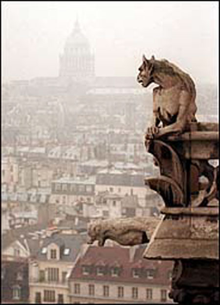 Notre Dame Cathedral Gargoyles a pilgrim in paradise ...